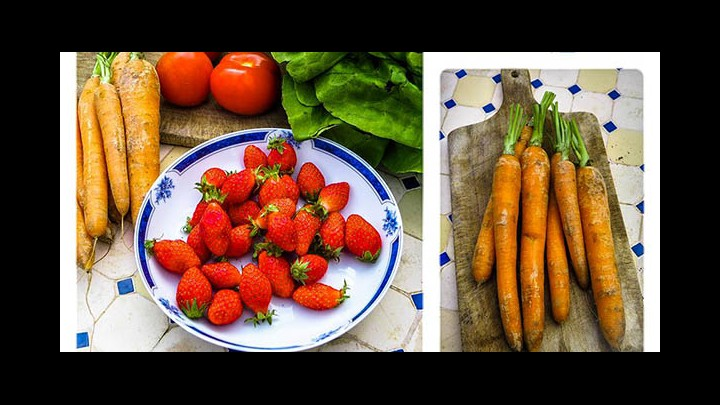 Bring Back The Bendy Carrots! Tottie Limejuice Raises The Case For Home Gardening