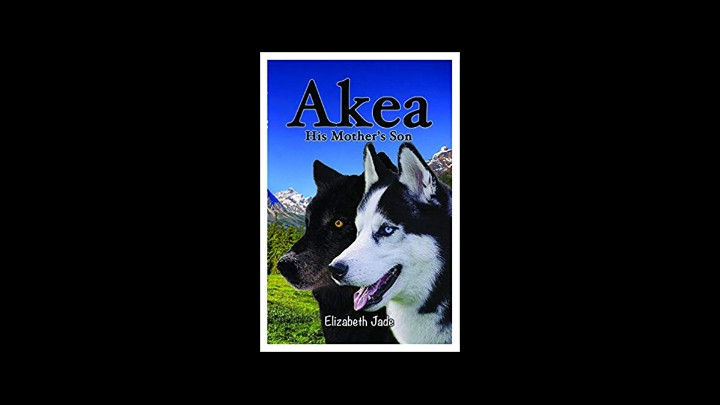 Readers Reviews Of Akea His Mother's Son By Elizabeth Jade