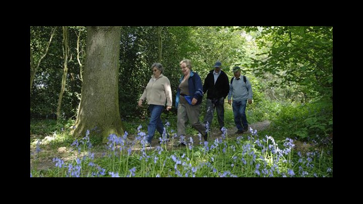 Walking For Health - Discussing The Benefits Of A Daily Stroll
