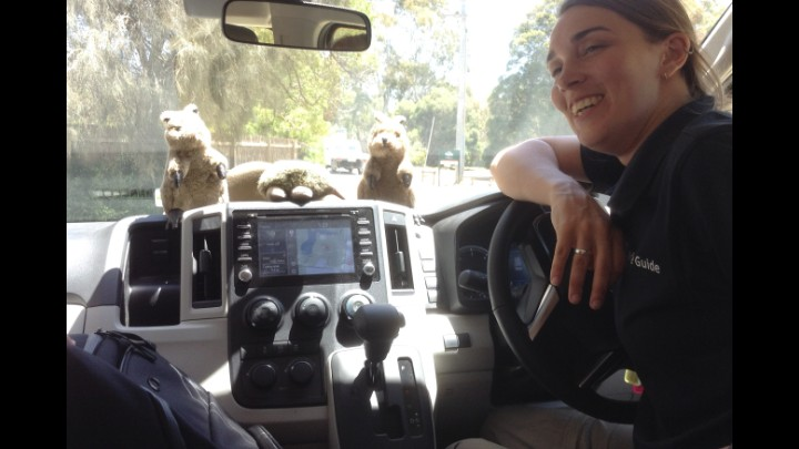 A Diary Of My Travels From The Quokkas Perspective Day 11